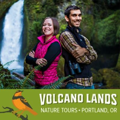 Volcano Lands