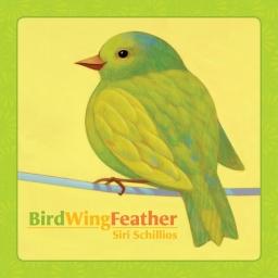 birdwingfeather-80