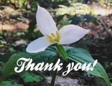 EPNA Thank you